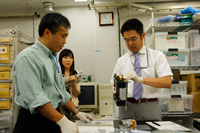 Wakata working on experiment related training (Credit: JAXA)