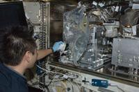 写真:AQHで作業する星出宇宙飛行士(10月25日撮影)