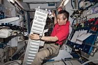 CDRAのメンテナンス作業を行う若田宇宙飛行士