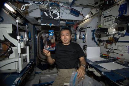 写真:毛細管実験の準備を行う若田宇宙飛行士
