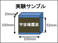 実験サンプルイメージ