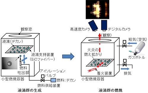 図:クリックで拡大:実験方法の概略