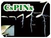 CsPINs実験