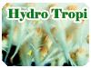 Hydro Tropi実験