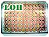 LOH実験