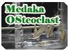 Medaka Osteoclast実験