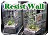 Resist Wall実験