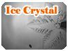 氷結晶成長実験