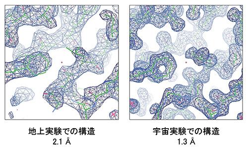 図2 地上結晶から得られた電子密度マップ(左)と宇宙結晶から得られた電子密度マップ(右)
