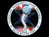 画像:Genes involved in the control of longevity have been discovered in Caenorhabditis elegans aboard the ISSへリンク