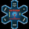 生体高分子の関与する氷結晶成長-自励振動成長機構の解明