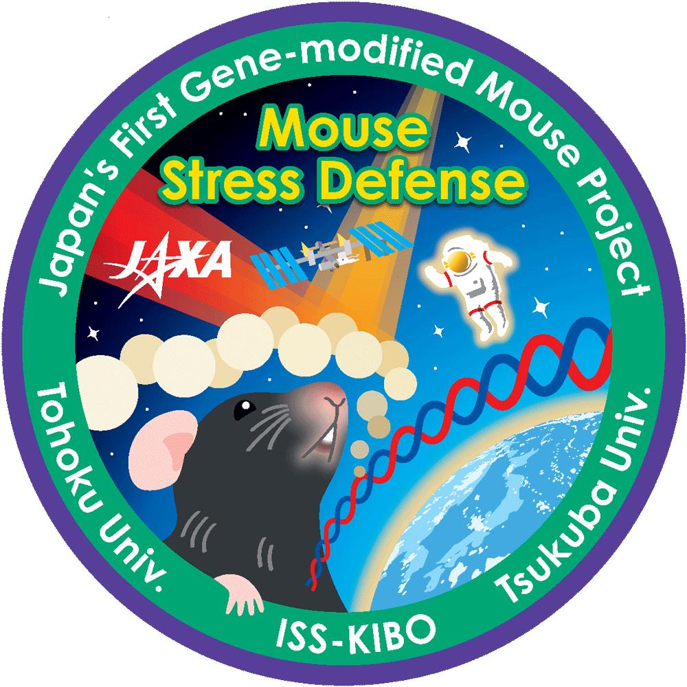 【MHU-3】宇宙ストレスにおける環境応答型転写因子Nrf2の役割