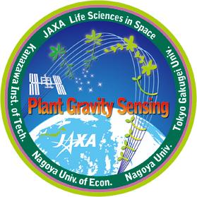 植物細胞の重力受容の形成とその分子機構の研究