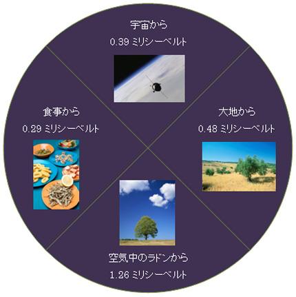 地上における年間被曝線量