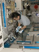 「きぼう」船内実験室で作業する若田宇宙飛行士