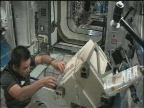ハーモニー(第2結合部)にて、HTV3で打ち上げたポンプを開梱している