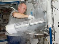 植物実験の実験試料をISSの冷凍・冷蔵庫(MELFI)に収納するウィリアムズ宇宙飛行士(提供:NASA)