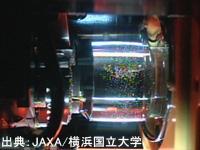 マランゴニ実験の液柱の様子(2011年9月撮影)(出典:JAXA/横浜国立大学)