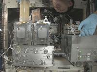 魚輸送容器からAQHの飼育水槽にメダカを移す様子(出典:JAXA/NASA)